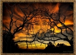 jesus-illusion-in-trees1.jpg