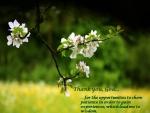 ThankYouGod (3).JPG