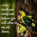 mygm-prayer-wallpaper8.jpg