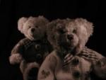 TeddybearP2234552[1].jpg