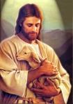 jesus-christ (sheep).jpg