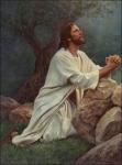 jesus-pray-2.jpg