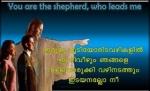599671_424633464236961_311225748_n.jpg