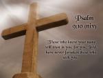 BibleVerseWallpaperPsalm910.jpg